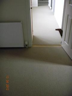 Ulster Carpet, Borneo, Oatcake (19)