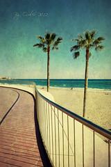 Paseo de Poniente (osolev) Tags: sea seascape praia beach palms mar mediterraneo playa paisaje palmeras alicante paseo plage textured poniente benidorm paseomaritimo comunidadvalenciana ltytrx5 osolev tatot flickraward