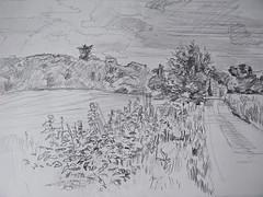 Ipsden, Oxfordshire (Martin Beek) Tags: road summer sky tree art observation landscape bush artwork artist wind drawing oxfordshire markmaking ipsden britishlandscape martinbeek landscapedrawing britishlandscapes landscapedrawings ipsdenlandscape201013 artwork201013