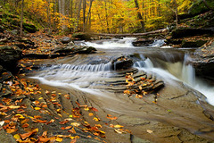 Not on Any Map (Ireena Eleonora Worthy) Tags: longexposure autumn red leaves yellow gold pennsylvania pa waterfalls streams redrock fallcolour rickettsglenstatepark mygearandme northernstraitsphotography