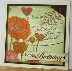 Happy birthday (Stempel Jetje) Tags: heroarts k5354 cl449 cl479