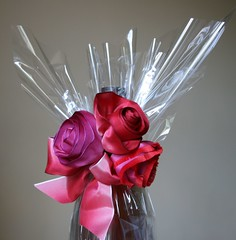 Roses and cellophane gift (Jane Means) Tags: giftwrapping fabricroses cellophanewrapping