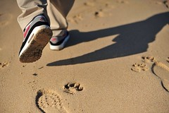 Nike Air Max 1 'Chili' White/ Varsity Red/ Med Grey 306345 161 ('03). (gooey_wooey) Tags: tia 1 sand footprints trains running nike airmax 87 inmotion wdywt