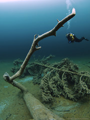 scuba diver and drift wood (scubaluna) Tags: wood summer water season austria tirol sterreich object wideangle clear driftwood diver bergsee kalt springlake tauchen unterwasser airbubbles fernsteinsee olympusesystem samarangersee scubalunaphotography sichtweiten schlosshotelfernsteinsee