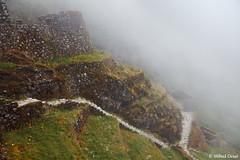 Inca Trail (Milind.Desai) Tags: 3 peru picchu inca three day trail phuyupatamarca inac phuyupatamarka phuyupatamarqa trailmachupicchumachu