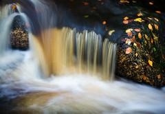 Wyming Brook - Water Detail (Dave Button) Tags: water flow waterfall stream peakdistrict brook wymingbrook