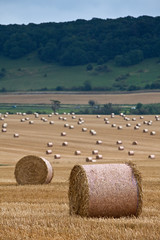 Hay Barrels in the South Downs (Rafe Abrook Photography) Tags: summer field sussex corn wheat barrel harvest hills haystack crops hay agriculture southdowns haybarrel