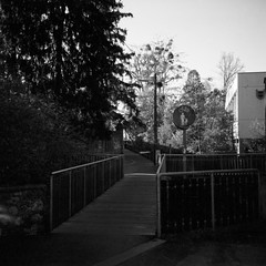 Bridge (lennox_mcdough) Tags: street bridge blue shadow bw plant tree 120 mamiya film water bike sign sport rollei analog creek fence mediumformat iso100 austria hall österreich pavement union pedestrian pebbles shade mamiya6 rodinal graz negativescan footpath steiermark styria a77 asa100 oesterreich rollfilm mamiyag75mmf35l canoscan9000f rpx100 takenin2012