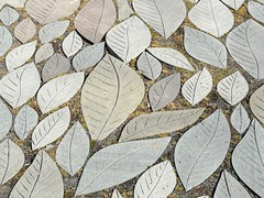 All Year Leaves (cosmolino) Tags: nyc licht pattern woodstock amerika muster nycolors cosmolino