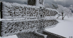 Would you like some ice? (Flicien Maire) Tags: winter snow black ice forest mummelsee