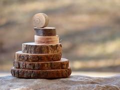 Wood Stack (nikagnew) Tags: wood sunlight rock maple natural bokeh stack rings bark pile ash treeblocks