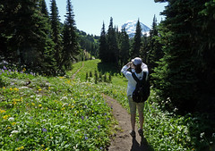 Skyline Divide 2011 013 (Barry Brower) Tags: mountbaker northcascades skylinedivide northcascadeshiking skylinedividehiking
