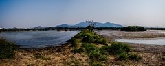#climate change  Today? Tomorrow? Yesterday........ (LyricalKnwledge) Tags: trees sky nature water grass landscape hongkong photojournalism conservation dry land environment    climatechange climate  environmentprotection