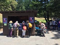 Mountain Play 2016: West Side Story (albedo20) Tags: public mttam westsidestory mountainplay