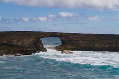 IMG_4081 (The.Rohit) Tags: ocean travel vacation beach hawaii waves oahu explore aloha seaarch laiepoint windwardcoast laiiepoint