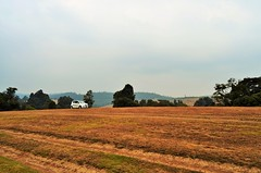 6th mile Ooty Meadows (Smevin Paul - Thrisookaran !! www.smevin.com) Tags:  india paul photography meadows tamil mile ooty 6th nadu smevin smevins thrisookaran