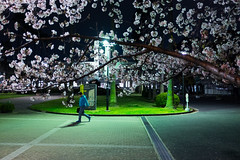 Spring in Japan,  Clothilde BL/Lost In Transition (Lost In Transition Project) Tags: street nightphotography people urban man color japan night spring fuji streetphotography sakura osaka x100s