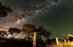 Nightscape - Aubigny - Queensland (andrew.walker28) Tags: night dark way stars long exposure nightscape galaxy milky starlight