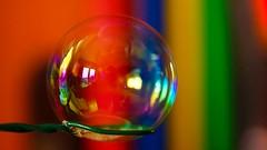 Bubbles -macro mondays HMM (Yasmine Hens) Tags: macro colors rainbow europa flickr colours belgium couleurs sony ngc bubbles sphere hmm bulles arcenciel cercle namur hens yasmine rond wallonie macromondays iamflickr flickrunitedaward sonyilce7 hensyasmine