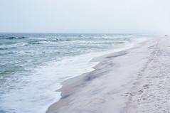 Grayton Beach State Park Florida