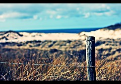 Behind the fences (alina.) Tags: ocean blue sky beach netherlands clouds canon fence 50mm spring focus dof bokeh dunes sunny zeeland 50mmf14 debanjaard canon550d canoneos550d alinacerny
