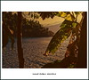 Road Trip Stories (italianoadoravel .BACK ,,,,,,,,,,,,) Tags: brazil fab people sunrise wonderful landscape photo perfect colorful vivid master doorway stunning parana picturesque soe erice blueribbon trapani onblue smörgåsbord cubism bestpic fpc blueribbonwinner singintheblues supershot flickrsbest passionphotography fineartphotos mywinner bigfave platinumphoto anawesomeshot impressedbeauty aplusphoto superbmasterpiece travelerphotos diamondclassphotographer flickrdiamond masterpic excellentphotographerawards superlativas theunforgettablepictures onlythebestare thatsclassy overtheexcellence colourartaward wonderfulworldmix picturefantastic betterthangood theperfectphotographer coloursplosion goldstaraward anticando thebestofday gününeniyisi clevercreativecaptures landscapesdreams unlimitedphotos worldtrekker ourmasterpieces rubyphotographer salveanatureza bestoneframeshortnominee overtheshot llovemypics flickrlovers peachofashot arstisticexpression