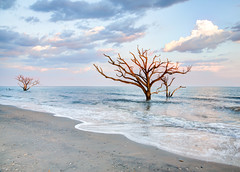Bottany Bay Beach (jwerry) Tags: beach sc charleston