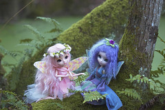 Even fairies can get the blues (Valrie Busymum) Tags: doll groove pullip fairies papin rewigged rechipped celsiy