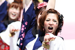 Intense (Teruhide Tomori) Tags: festival japan dance spring kyoto action performance event yosakoi     kyotosakurayosakoi