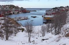 sorvagen - lofoten - norway - 16 (hors-saison) Tags: sea mer norway port landscape islands norge norwegen shore noruega paysage pecheur lofoten sorvagen norvegia norvege rivage nauy noorwegen iles norvge norja  noregur  srvgen norwegia norveka  noorwe