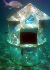 The Underwater Post Office (testpatern) Tags: ocean new blue sea fish water island islands office underwater post mail pacific south postal hebrides vanuatu melanesia