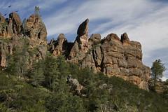 Condor Gulch Trail (Tōn) Tags: california ca nature landscape unitedstates wildlife animalia condors pinnacles pinnaclesnationalmonument condorgulchtrail tonyvanlecom