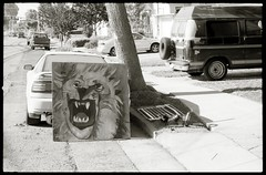 Roar (efo) Tags: bw painting berkeley tiger lion konica autoreflex