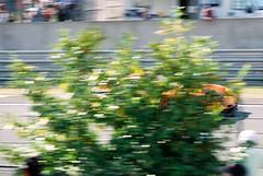 Team LNTPanoz Esperante GT-LM-FordGT2 (Moments of Yesterday) Tags: france film 35mm 2006 mans le hours 24 amateur francais sarthe