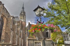 "Flowers in Delft • <a style=""font-size:0.8em;"" href=""http://www.flickr.com/photos/45090765@N05/7767747448/"" target=""_blank"">View on Flickr</a>"