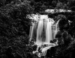 Vestida de Branco (Renato ma Goncalves) Tags: bw white black portugal water gua branco waterfall preto e 1770 gers cascata 60d