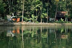 Living by the water (gornabanja) Tags: life houses india home living nikon d70 kerala laundry colourful backwaters mygearandme mygearandmepremium blinkagain rememberthatmomentlevel1