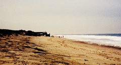 beach (bluebird87)