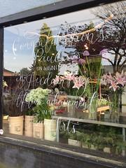Congrats Paul Wong! (Bhlubarber) Tags: street flower mobile factory main mount pleasant iphone audain