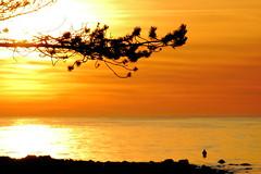 Golden waters (Bwaah) Tags: light sunset sun beach golden three rocks shadows fishermen