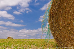 The colors of the net (Johan Konz) Tags: blue sky white france net field clouds landscape village cloudy outdoor hay grassland haybales franchecomte hautesane vauvillers hurecourt