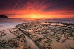 Turimetta Colour Bomb (Ian Moore Photo) Tags: colour beach sunrise nikon sydney d800 turimetta