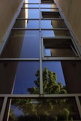 Glastreppenhaus 1 (Rüdiger Stehn) Tags: 2016 2000er 2000s europa mitteleuropa deutschland norddeutschland schleswigholstein stadt bauwerk profanbau architektur haus treppenhaus glas glasfassade spiegelung reflection gebäude canoneos550d rüdigerstehn kiel bremerstrase