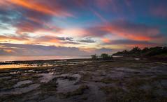 Sunrise on Fossil Beach (jobsiteart) Tags: ocean light sea sky cloud sun beach sunrise landscape fossil dawn key colorful florida miami outdoor peaceful atmosphere atlantic mangrove tropical serene reef biscayne