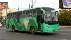 Mindanao Star 15635 (Monkey D. Luffy 2) Tags: bus bar philippines daewoo society enthusiasts philbes