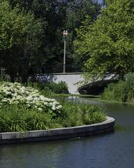 ForestPark_SAF7511 (sara97) Tags: park nature outdoors missouri saintlouis forestpark citypark urbanpark photobysaraannefinke copyright2016saraannefinke