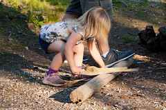 Sawing Firewood (LongInt57) Tags: wood pink blue camping vacation brown white lake holiday playing canada man motion blur men green feet girl children daddy foot grey toddler dad child play bc action okanagan father gray daughter blonde campground campsite helping sawing pretending mccullouch