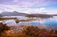 Rannoch Moor. Scotland (Jenny Rainbow) Tags: trip morning sky mountains tourism nature