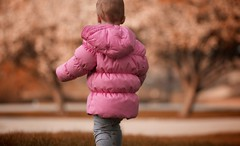 Winter, Spring, and Fall (Philocycler) Tags: snow ice toddler bokeh fallcolors blossoms childphotography hss springblooms pinkjacket slidersunday