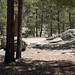 Whitetail Campground #13